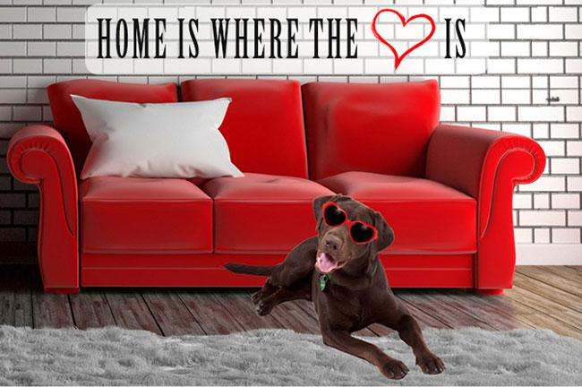 BOE & HOME
