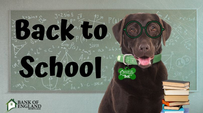 Back to School with BOE the Dog
